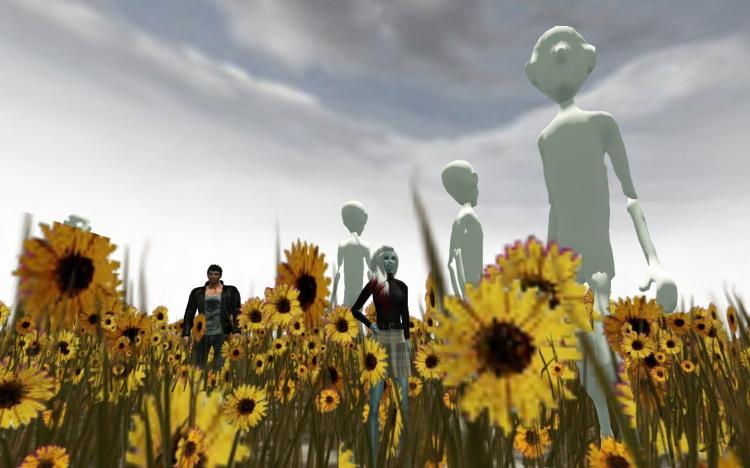 Art Installation in Second Life