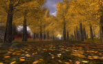 Autumn Wood in The Trace Too, Second Life