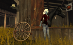 Horse barn at The Trace Too, Second Life