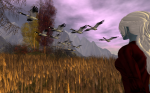 Flight of Canadian Geese, The Trace Too, Second Life